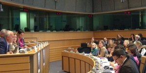 Speaking at the European Parliament